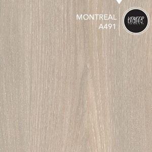 ESK MDFLAM: A491 MONTREAL Kartela Rengi